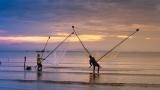 Море на берег выбросил огромная тварь с метровой пастью: первые фотографии