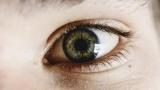 Ученые назвали обладателя самых красивых глаз