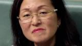 Глэдис Лю призывал отдохнуть иностранных инвестиций, прежде чем она стала депутатом