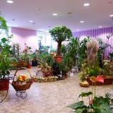 Ассортимент современных цветочных салонов